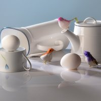 Про птичек с яйцами :: mrigor59 Седловский