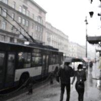 Дождливый Питер :: Алексей Ефимов