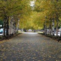 и снова осень :: Alexandr Staroverov