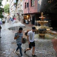 Дождливым днём.... :: Алёна Савина