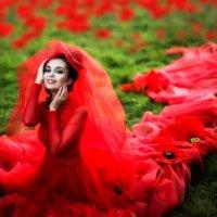 Маковая свадьба :: Galina Zabruskova