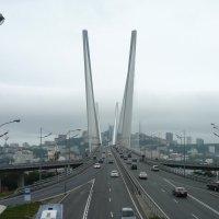 Золотой мост.Вантовый гигант. :: Ирина Атаманская