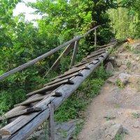 Спуск к водопаду :: Вера Щукина