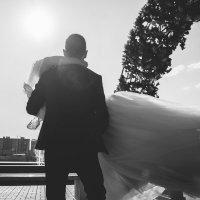 свадебный репортаж :: Dmitriy Predybailo