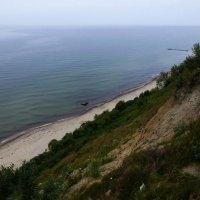 Балтийский берег. :: Murat Bukaev