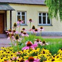 цветы у дома :: Валентина. .