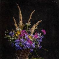 Цветы осени :: Андрей Иванов