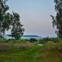 Молочные реки :: Мария Богуславская