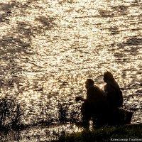 Посиделки у озера :: Александр Горбунов