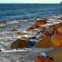 Балтийское побережье :: Сергей Карачин