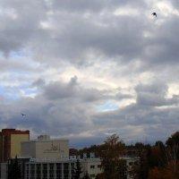 Конец сентября . :: Мила Бовкун