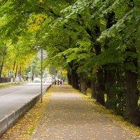 В Городе осень :: Роман никандров