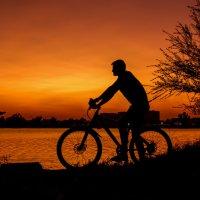 Велосипедист :: Ирина Масальская
