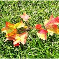 Осень.... :: Валерия Комова