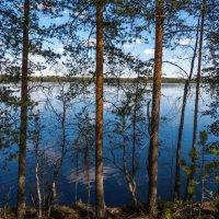 Озерный край :: Владимир Лазарев