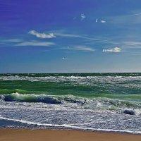ветер с моря дул... :: Александр Корчемный