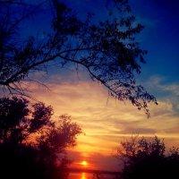 Люблю вечерний я закат и горизонт с вечерним солнцем... :: Люша