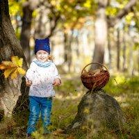 В лучах теплой осени :: Виталий Левшов