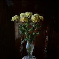Любимые цветы любимой женщины :: Александр Бойко