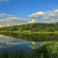 Храм Преподобного Сергия Радонежского в Солнцеве :: ninell nikitina