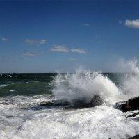 Ветер с моря дул... :: Людмила