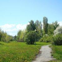 Весна в Волжском Утёсе :: Стас Борискин (Stanisbor)