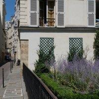Прогулки по Парижу.... :: Алёна Савина