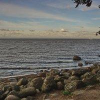 Брег Финского залива :: Владимир Гилясев