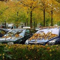 Осень... в городе :: Galina Dzubina