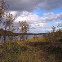 У озера 2 :: Владимир Стаценко