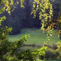 Осень в Павловском парке :: Ирина Румянцева