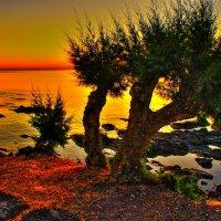 Теплый вечер  Крит :: олег свирский