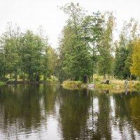Найди рыбака или клёвое место :: Роман никандров