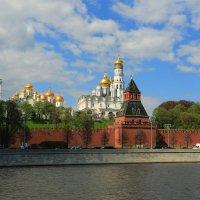 Вид на Кремль :: ninell nikitina
