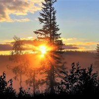 Вот и солнце брызнуло лучами :: Сергей Чиняев