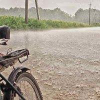 летний дождь :: юрий иванов