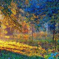 Палитра  Осени :: олег свирский