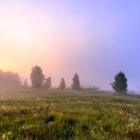 туман за озером :: Василий Иваненко