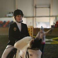 Соревнования для пони :: Олеся Колитченко