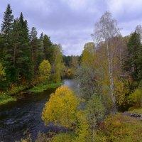 Река Тура. :: Наталья