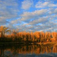 Обмелела по осени река ... :: Евгений Юрков