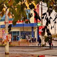 Стоит только шагнуть на газон и город преображается :: Михаил Полыгалов