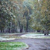Первый снег :: Наталья Тагирова