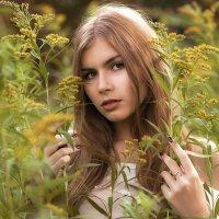 Лиза :: Сергей Иванов