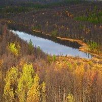 Озеро Портянка с высоты птичьего полета. :: kolin marsh