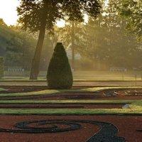 Туманная утренняя свежесть парка :: Владимир Гилясев