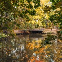 Осень... :: Nyusha