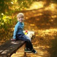 В тени осенних деревьев :: Альбина