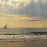 Море :: Сергей
