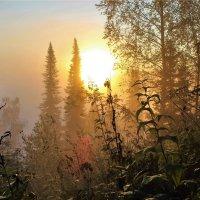 Рассвет в тумане :: Сергей Чиняев